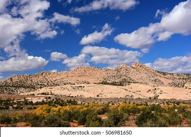 fall colors along the butler wash road near comb ridge, near blanding, utah