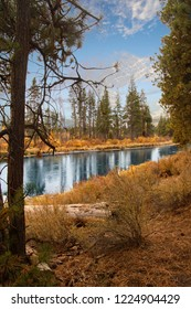 Fall colors along Lava Island, Deschutes River Trail, Bend, Oregon