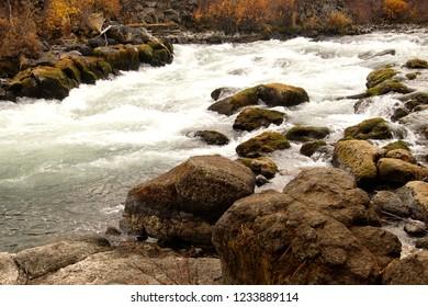 Fall colors along Lava Island, Deschutes River Trail, Bend, Oregon
