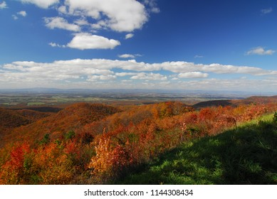 Fall Colors of autumn in Skyline Drive Shenandoah National Park Virginia
