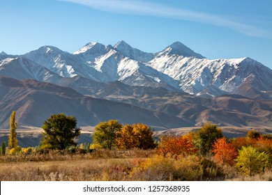Fall colors in Bishkek, Kyrgyzstan with the Tien Shan Mountains in the background, in the autumn.