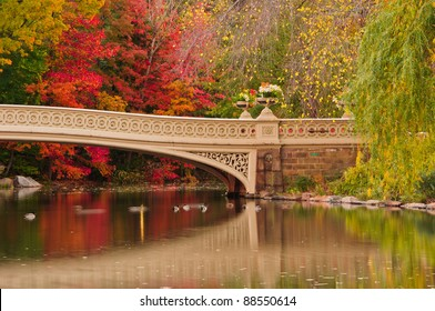 Fall colors at Bow Bridge in Central Park. New York City