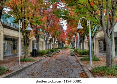 Fall Colors in the City, Walkway, Columbia, Maryland