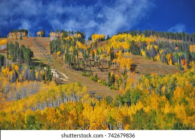 Fall Colors in Colorado mix in with a ski slope