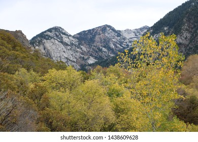 Fall colors cover the foothills of the Wasatch mountain range in late October near Sandy, Utah.