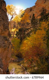 Fall Colors in Death Box Canyon, Utah