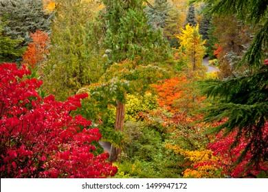 Fall colors at Kubota Garden in Seattle, WA