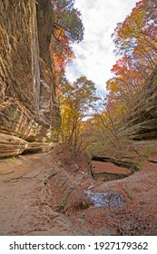 Fall Colors Looming over a Secluded Canyon in Lasalle Canyonin Starved Rock State Park in Illinois