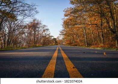 Fall colors on Skyline Drive, Shenandoah National Park, Virginia, USA