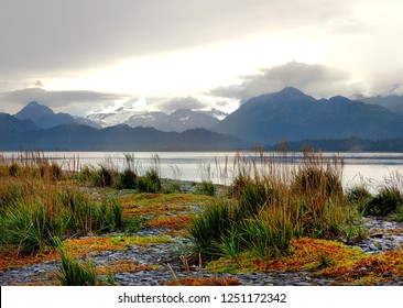 Fall Colors on the Spit Shoreline of Homer, Alaska