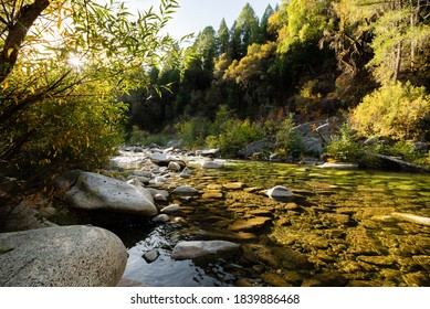 Fall colors on the Yuba River