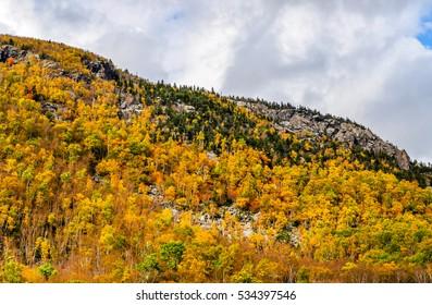 Fall colors paint a mountainside near Brandon, Vermont.