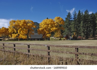 Fall colors and Ranch-land, Nevada