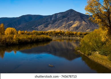 Fall colors reflection in Carson River, Nevada