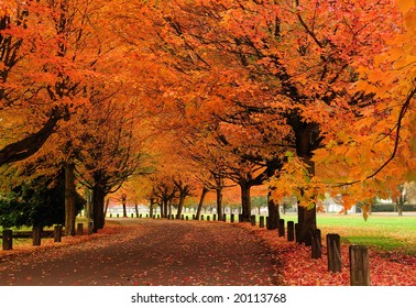 Fall colors, Trout Lake Park, Vancouver, Canada