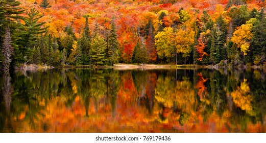Fall colour reflected in the still waters of Canisbay Lake, Algonquin Provincial Park, Ontario, Canada - Shutterstock ID 769179436