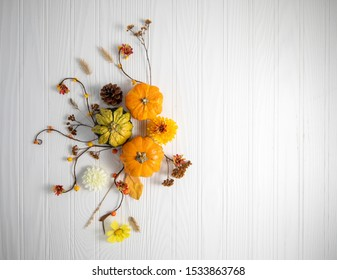 Fall composition, pumpkins dry nature over a wood background (copy space)