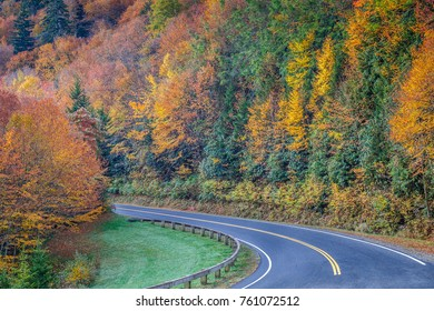 Fall Covered curved Road in Great Smoky Mountains National Park