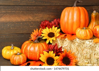 Mums Pumpkins Images Stock Photos Vectors Shutterstock