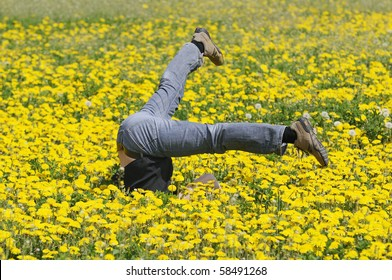 fall down in the flowers