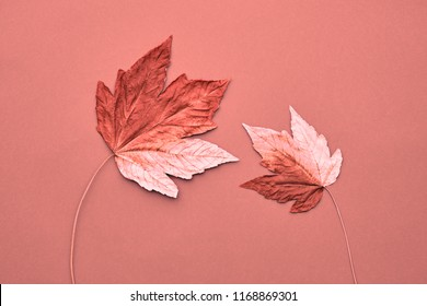 Fall Fashion, Vintage. Maple Leaf Couple. Autumn Arrives. Minimal, Vanilla Pastel Background. Design Art Concept, Creative Sweet Style.
