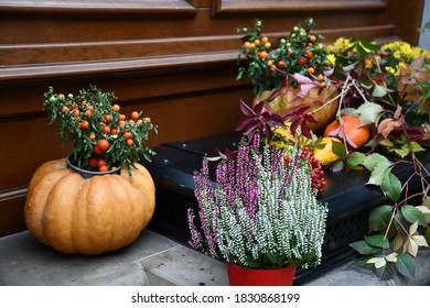 Fall floral arrangements with blooming flowers and cherry tomatoes bush in pumpkin as flower pot. Thanksgiving still life porch decorations