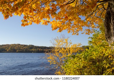 Fall Foliage Background. Vibrant fall color frames the pristine waters of Sable Lake at the Pictured Rocks National Lakeshore in the Upper Peninsula of Michigan.