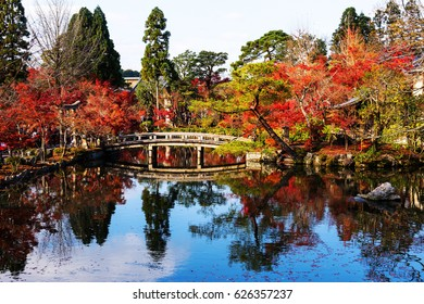 Fall foliage colors with skyline reflection at Eikando Temple in Kyoto, Japan