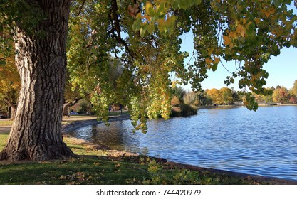 Fall foliage colors at Washington Park by the lake in Denver, Colorado, in Autumn Season