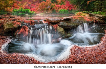 Fall Foliage and a Flowing Stream in the Japanese Garden