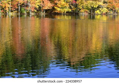 Fall foliage and a hint of blue sky partially reflected on pond in New England