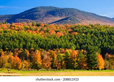 Fall foliage mountain range, Stowe Vermont, USA