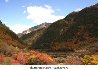 Fall foliage on a clear crisp day in Jiuzhaigou Valley National Park of Sichuan, China – a truly colourful and spectacular view!