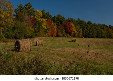Fall foliage on edge of hay field with bright reds and oranges and yellows. Rolled hay in field sit on the green and dried grass of the meadow or farmland.