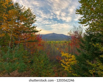 A fall foliage picture of Mount Katahdin in Baxter State Park. This mountain in the forest is the tallest in the state of Maine.