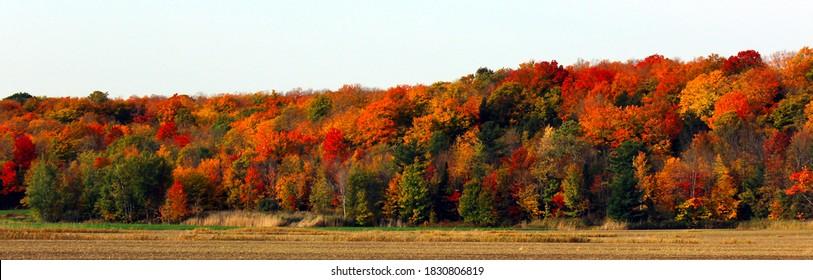 Fall foliage season in Quebec