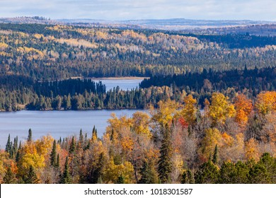Fall foliage vista of the Superior National Forest. View on Caribou Lake and Bigsby Lake near North Shore of Lake Superior, Minnesota.