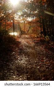 A Fall Footpath