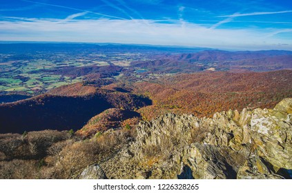 fall forest colors in shenandoah
