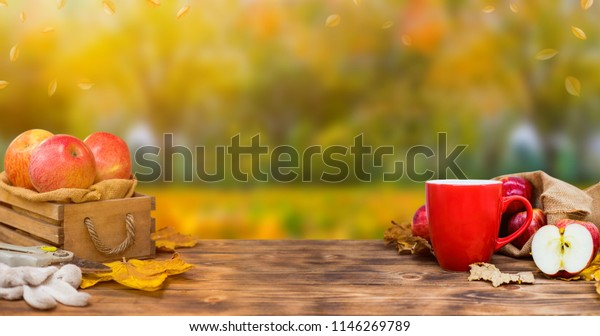 Fall harvest cornucopia. Cup of Hot apple tea for fresh start of the day. Autumn season warm drink. Copy space on wood background.