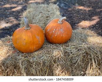 Fall hay and pumpkin display