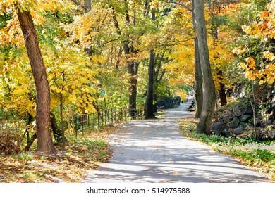 Fall at Highbridge Park in New York City