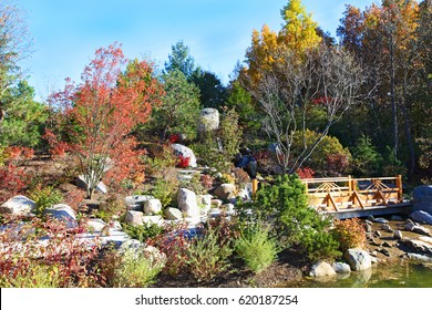 Fall Japanese garden in Grand Rapids, Michigan