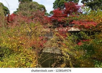 Fall of Kurashiki of Japan
