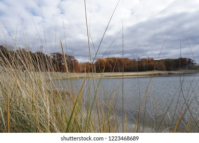 Fall landscape in the Midwest with lake, clouds, and grass