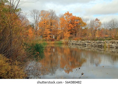 Fall landscape with reflection