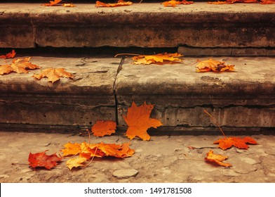Fall leaves background. Fallen maple leaves on the old textured stone staircase - fall October landscape, retro tones applied