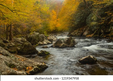 The Fall leaves are in beautiful color in Great Smoky Mountains National Park on Little River
