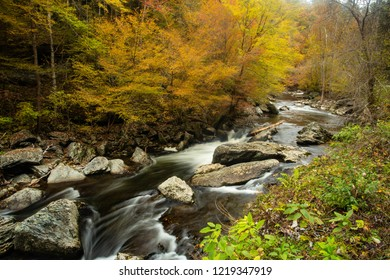 Fall leaves are colorful on Little River Road in Smoky Mountains National Park Tennessee