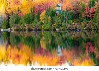 Fall leaves in full color in cottage country, north Quebec, Canada.